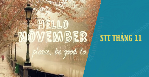 STT tháng 11 hay