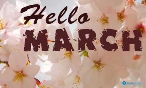 Chào tháng 3, Status, câu nói hay tháng ba 5