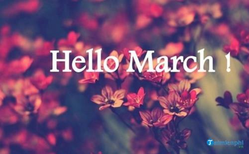 Chào tháng 3, Status, câu nói hay tháng ba 6