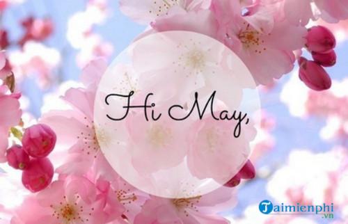 Chào tháng 5, Status, câu nói hay tháng năm 4