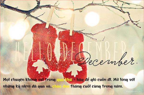 Status tháng 12 đong đầy yêu thương