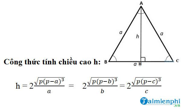 Cách tính đường cao trong tam giác cân, đều, vuông 3