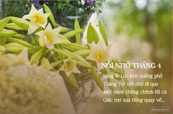 11 Bài thơ hay về hoa loa kèn tháng tư