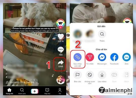 Tai video TikTok khong logo cho iPhone