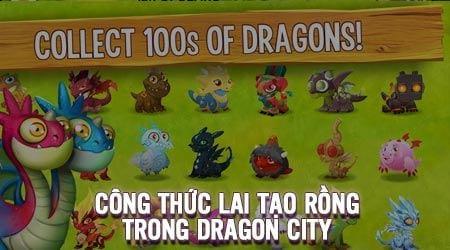 Công thức lai tạo rồng trong Dragon City