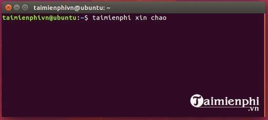 cach cai va su dung xvideoservicethief tren linux mint ubuntu 3