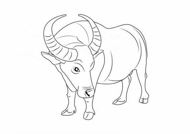 [taimienphi.vn] tranh tô màu con vật cho bé tập tô, con mèo, vịt, gà, cá, thỏ