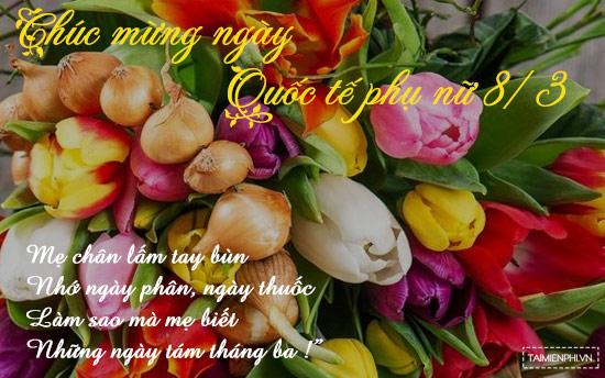 Thơ tặng mẹ ngày 8/3, những bài thơ 8 tháng 3 tặng mẹ hay, ý nghĩa nhất 2