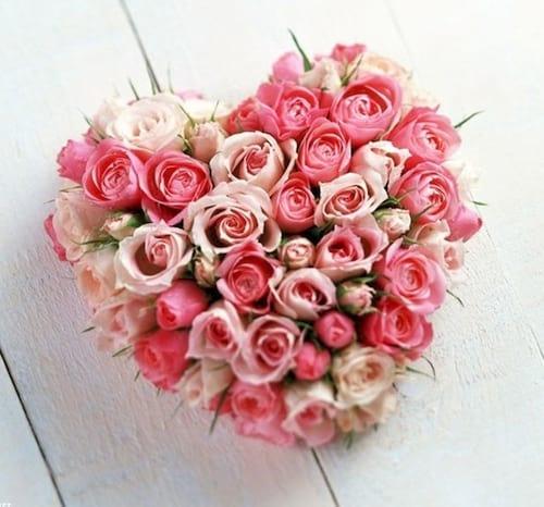 hinh anh hoa dep 8 3 nhung bo hoa dep nhat danh cho ngay phu nu 3