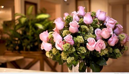 hinh anh hoa dep 8 3 nhung bo hoa dep nhat danh cho ngay phu nu 10
